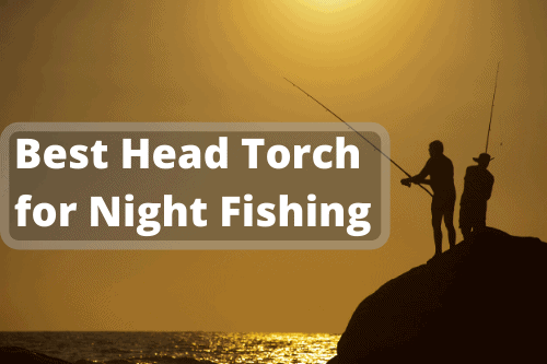 Best Head Torch for Night Fishing